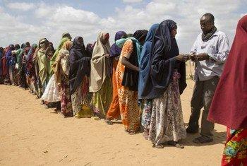 Des femmes somaliennes réfugiées font la queue pour une distribution de bois de chauffage dans le nord-est du Kenya. Photo HCR/K. McKinsey
