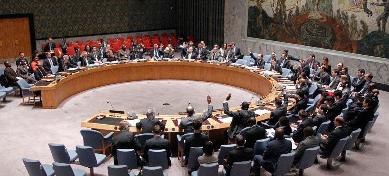 Reunión del Consejo de Seguridad  Foto: