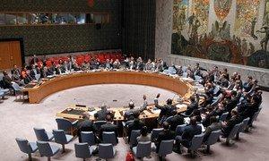 Le Conseil de sécurité des Nations Unies. Photo : ONU / Paulo Filgueiras