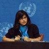 人权高专办发言人沙姆达萨尼资料图片。