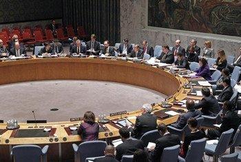 Le Conseil de sécurité des Nations Unies. Photo ONU/Paulo Filgueiras