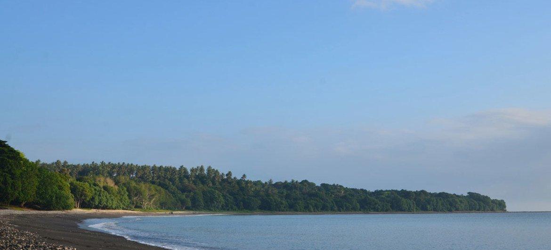 The black sand coast near Taremb, Malekula Island, Vanuatu.