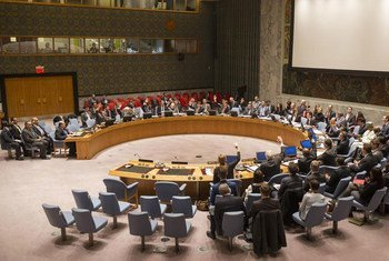 El Consejo de Seguridad de la ONU  Foto: