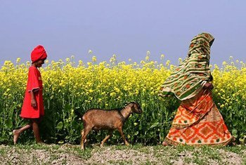 Photo: ONU Femmes/Jashim Salam