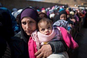 Refugiados sirios en Líbano  Foto:ACNUR/A.McConnell
