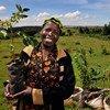 De nombreux pays africains se sont récemment lancés dans des campagnes de plantation d'arbres massives, notamment au Kenya et en Ethiopie