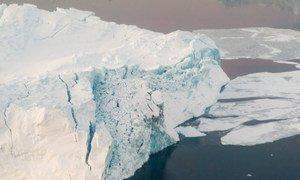 Des iceberts dans le fjord d'Ilulissat, au Groënland. Photo ONU/Mark Garten