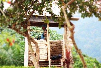 Une sentinelle de la MONUSCO en faction dans sa guérite surveille les abords d'une base de la Mission dans le territoire de Walikale, province du Nord Kivu. Photo MONUSCO.