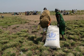 Across South Sudan, WFP and its partners have reached around half a million people displaced or otherwise directly affected by conflict since the crisis erupted in December 2013.