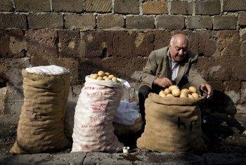 Un homme vend des pommes de terre au marché à Erevan, en Arménie. Photo FAO/Johan Spanner