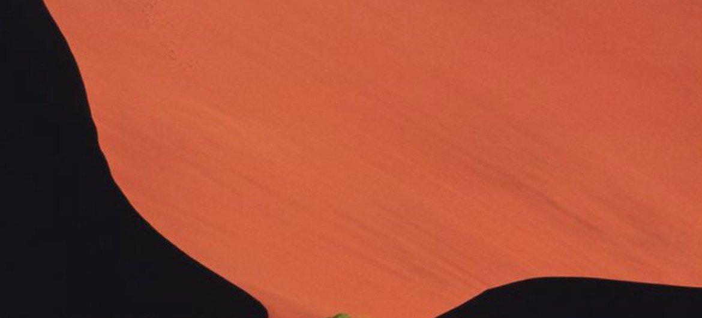 التصحر في ناميبيا. تصوير برنامج الأمم المتحدة للبيئة / غلوور