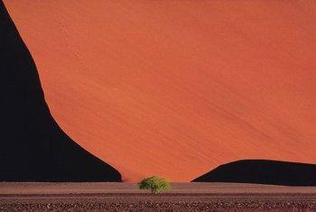 Desertification in Namibia.