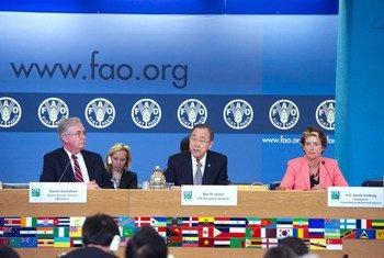 El Secretario General de la ONU, Ban Ki-moon,  en una reunión del Comité sobre Seguridad Alimentaria en Roma  Foto; ONU/Eskinder Debebe