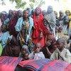 Desplazados por la violencia de Boko Haram en Nigeria  Foto: IRIN/Anna Jefferys