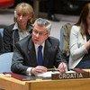 نائب رئيس المجلس الإقتصادي والإجتماعي للأمم المتحدة السيد فلاديمير دروبنياك. تصوير إسكندر ديبيبي. الأمم المتحدة