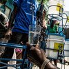 Distribución de agua limpia en Haití. Foto: ONU-Logan Abassi