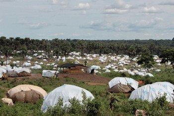 Refugiados de la República Centroafricana en Camerún  Foto; IRIN/Otto Bakano