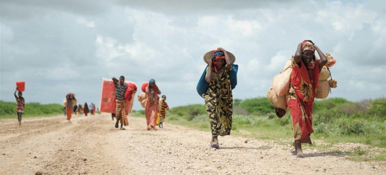 Desplazados por la violencia en Somalia  Foto:  ONU/Tobin Jones