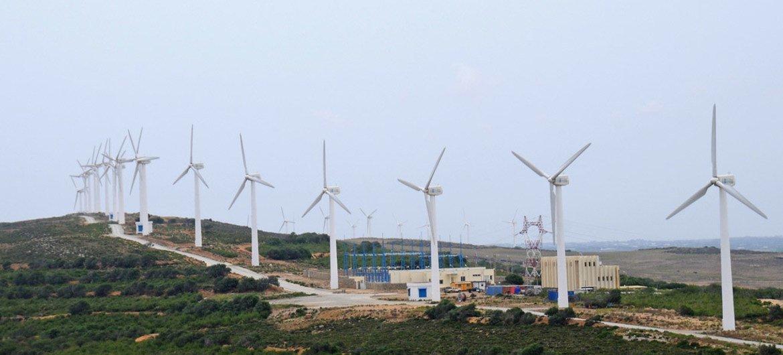 Ветровые турбины в Тунисе. Фото Всемирного банка