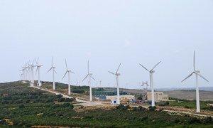 Wind turbine farm in Tunisia.