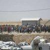 Miles de iraquies huyen de la violencia en Mosul  Foto: ACNUR/I. Colijn