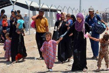 Des civils déplacés par les combats à Mossoul en Iraq arrivent à Erbil.