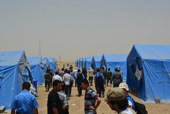 Des Iraquiens déplacés par les violences reçoivent une assistance de l'ONU. Photo PAM/Mohammed Albahbahani