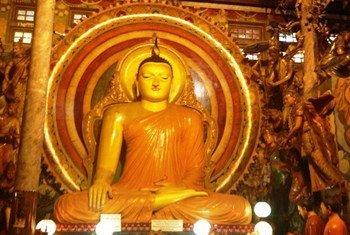 Outside a Buddhist temple in Sri Lanka.