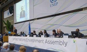 Le Secrétaire général Ban Ki-moon à la session inaugurale de l'Assemblée des Nations Unies pour l'environnement à Nairobi. Photo ONU/Eskinder Debebe