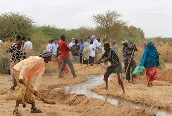 An irrigation canal being reinforced near the Kabasa displacement site, outside Doolow in southern Somalia. The work is supported by the World Food Programme.
