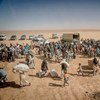 Refugiados sirios en Jordania  Foto: ACNUR/J.Kohler