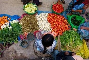 Aumento de produção de alimentos não resolveu problema da fome.