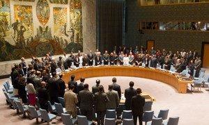 Les membres du Conseil de sécurité observent un moment de silence en mémoire des victime du vol MH17.