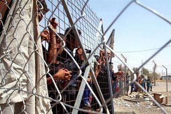 Le camp de Barharka à proximité d'Erbil dans le nord de l'Iraq abrite des milliers de personnes déplacées.