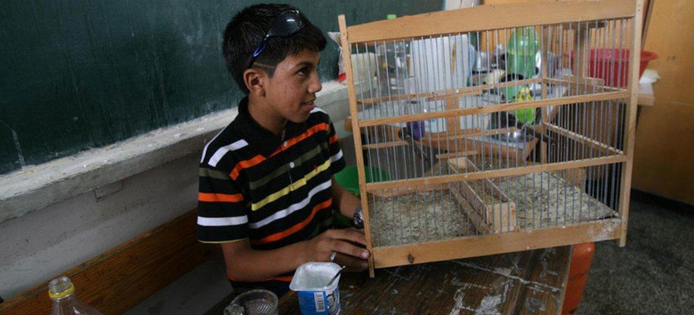 Atualmente, somente 30% das crianças entre três e seis anos de idade frequentam a pré-escola em Gaza.