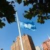 Bendera ya Un ikipoepea nusu mlingoti kwenye makao makuu ya shirika hilo mjini New York Marekani kuwakumbuka wafanyakazi waliopoteza maisha yao kwenye machafuko Gaza