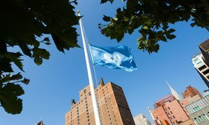 The UN flag flies at half-mast at the Organization's Headquarters in New York, in memory of fallen colleagues who lost their lives in the conflict in Gaza.