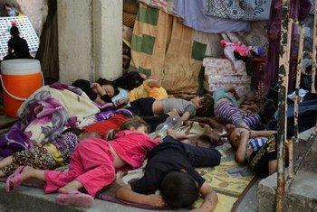 En août 2014, des membres d'une famille yézidie ayant fui Sinjar ont trouvé refuge dans le village de Shekhadi, en Iraq. Photo HCR/N. Colt