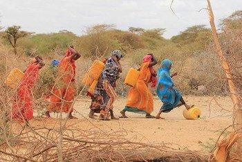 La inseguridad alimentaria aumenta con los fenómenos extremos derivados del cambio climático. Foto:  FAO