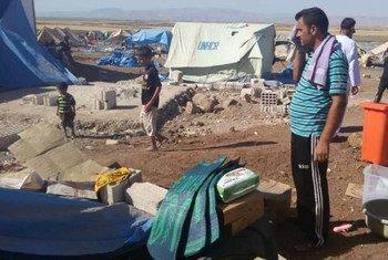 La distribution de tentes et d'autres articles de première nécessité continue alors que la population du camp de Newroz augmente avec l'arrivée de nouveaux déplacés yézidis du Mont Sinjar en Iraq. Photo HCR