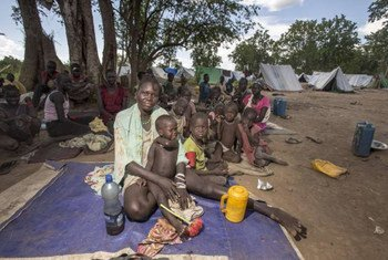 South Sudanese refugees sit in the shade of a tree in Ethiopia which hosts more than 600,000 refugees from several countries.