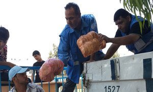 WFP distributing bread for displaced people in Gaza during a ceasefire in early August 2014.