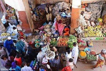 Vente de fruits et légumes sur le marché de N'Djamena, Tchad.