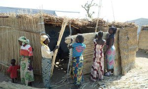 Nigerian women forced to flee their homeland work together to build a shelter at the Minawao refugee camp in Cameroon.