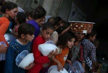 Desplazados en Iraq  Foto:ACNUR/B. Szandelszky
