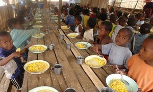 Investing in school meals 'win-win' for West African nations – UN