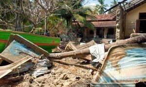 Un village du nord du Sri Lanka après le tsunami du 26 décembre 2004.