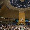La Asamblea General de la ONU conmemora cada 29 de noviembre el Día Internacional de Solidaridad con el Pueblo Palestino.  Foto de archivo: ONU/Amanda Voisard