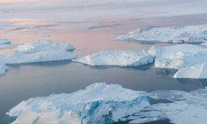 El volumen del hielo disminuye en el Ártico.