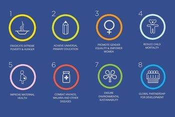 Millennium Development Goals (MDGs).